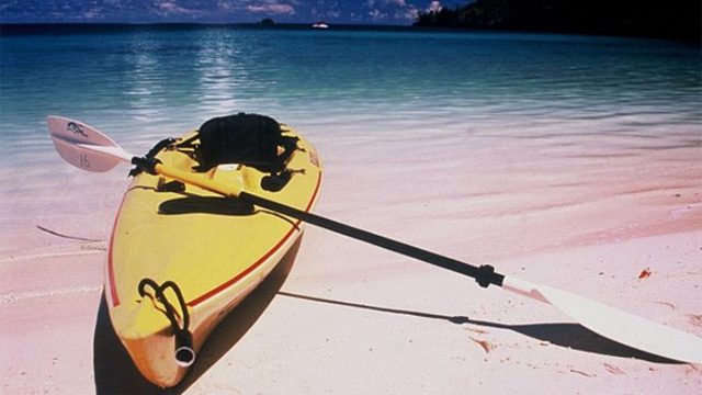 Kayak & Fishing Tours